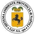 Logo S.A.P.NA. SISTEMA AMBIENTE PROVINCIA DI NAPOLI S.P.A.